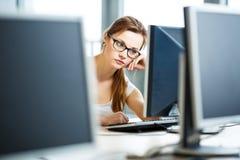 Abbastanza, studentessa che esamina uno schermo di desktop computer Fotografia Stock