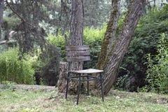 Abbattimento solo o triste al giardino, parco con le sedie di legno Immagini Stock