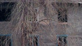 Abbau der alten Häuser auf dem Standort des Neubaus stock video footage