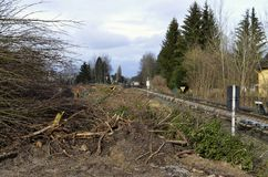 Abbau der Vegetation in Berlin als Vorbereitung für die Bahnverbindung zwischen Berlin und Dresden Lizenzfreie Stockfotos