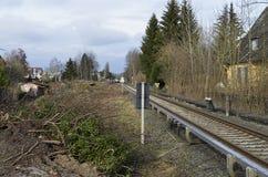 Abbau der Vegetation in Berlin als Vorbereitung für die Bahnverbindung zwischen Berlin und Dresden Stockfotografie