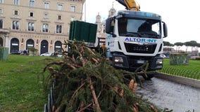 Abbau des Weihnachtsbaums Spelacchio vom Marktplatz Venezia, Ro Lizenzfreie Stockbilder