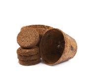 Abbaubarer Kokosnusstopf lokalisiert Lizenzfreies Stockbild