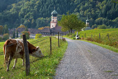 Abbaye dans la forêt noire, Munstertal Images stock
