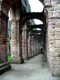 Abbaye de fontaines - voûte Image libre de droits