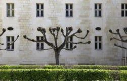 abbaye de fontevraud france val loire Royaltyfria Bilder