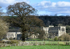 Abbaye de Rievaulx Image stock