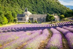 Abbaye de Sénanque, Provence, Francia foto de archivo libre de regalías