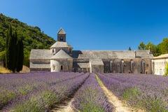 Abbaye de Sénanque con el campo floreciente de la lavanda Fotografía de archivo
