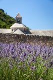 Abbaye de Sénanque con el campo floreciente de la lavanda Foto de archivo libre de regalías