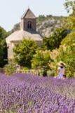 Abbaye de Sénanque with lavender field, Provence, France Stock Photos