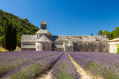 Abbaye de Sénanque mit blühendem Lavendelfeld stockfotografie