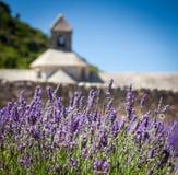 Abbaye de Sénanque mit blühendem Lavendelfeld lizenzfreie stockfotos