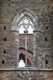 Abbaye de San Galgano, Toscane, Italie photos stock