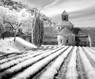 Abbaye de Senanque Stockfotos