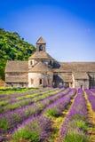 Abbaye de Senanque, alfazema de Provence em França imagem de stock