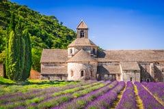 Abbaye de Senanque, alfazema de Provence em França fotos de stock royalty free