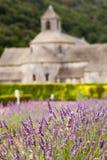 Abbaye de Senanque con el campo de la lavanda, Provenc Fotos de archivo