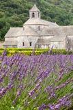 Abbaye de Senanque en la región de Vaucluse, Provenc Foto de archivo libre de regalías