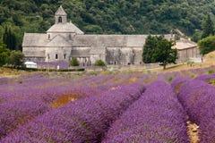 Abbaye de Senanque i Provence, Frankrike Arkivbilder