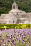 Abbaye de Senanque med lavendelfältet, Provenc Arkivfoton