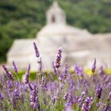 Abbaye de Senanque med lavendelfältet, Provence Arkivbilder