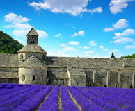 Abbaye de Senanque mit Lavendelfeld Stockbild
