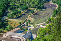 Abbaye de Senanque nära byn Gordes, Vaucluse region, Provenc Royaltyfri Bild