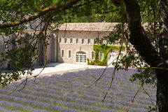 Abbaye de Senanque near village Gordes, Provence, France Royalty Free Stock Photography