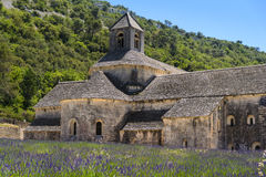 Abbaye de Senanque och lavendel, Frankrike Arkivbild