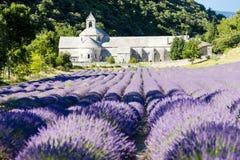 Abbaye de Senanque, Provence Images libres de droits