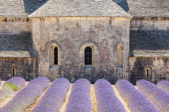 Abbaye de Senanque, Provence, Francia Fotografía de archivo libre de regalías