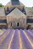 Abbaye de Senanque, Provence, Frankreich Lizenzfreies Stockbild