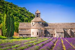 Abbaye de Senanque, Provence-Lavendel in Frankreich lizenzfreie stockfotos