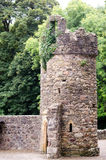 Abbaye de Tintern de l'Irlande Photo stock