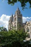 Abbaye de Westminter Photo libre de droits