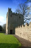 Abbaye, Monkstown Photo stock