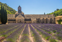Abbaye Notre-Dame de Senanque. 12th-century Cistercian monastery with summer lavender field near Gordes in France Royalty Free Stock Image