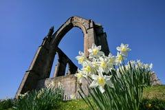 Abbazia di Bolton, Yorkshire del nord Fotografia Stock Libera da Diritti