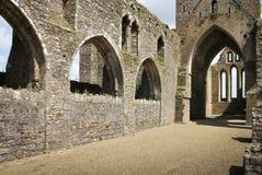 Abbazia di Dunbrody contea Wexford l'irlanda fotografie stock