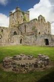 Abbazia di Dunbrody contea Wexford l'irlanda fotografia stock