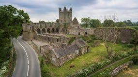 Abbazia di Jerpoint Thomastown, contea Kilkenny, Irlanda immagini stock