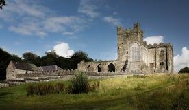 Abbazia di Tintern contea Wexford l'irlanda fotografia stock libera da diritti