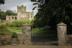 Abbazia di Tintern contea Wexford l'irlanda immagine stock libera da diritti
