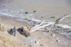 Abbellisca alla costa ripida di Brodtener vicino al nde del ¼ di Travemà immagini stock