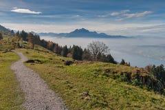 Abbellisca con i prati verdi sopra il lago Lucerna, le alpi, Svizzera Immagini Stock Libere da Diritti