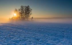 Abbellisca con il campo dell'inverno sotto neve all'alba Immagini Stock