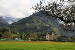 Abbellisca con il campo e l'alta montagna verdi a Interlaken, Swit Fotografie Stock