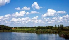 Abbellisca con il fiume e la natura nella campagna Immagine Stock Libera da Diritti