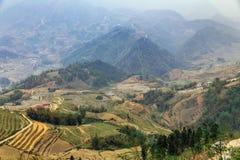 Abbellisca con l'azienda agricola della scala a libretto e la montagna con nebbia nella sera di estate a PA del Sa, Vietnam Fotografia Stock